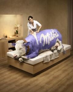 milka2-240x300